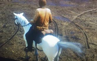 荒野大镖客2稀有马匹阿拉伯马位置介绍 稀有马怎么优游平台娱乐
