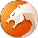猎豹优游平台娱乐器