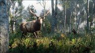 《荒野大镖客2》野生动物实机截图 毒蜥、秃鹫齐聚西部