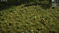 《自然本能》最新截图公布 与野生动物一起互帮互助