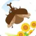 暑假与我和甲虫