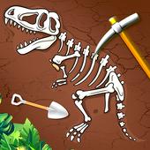 考古挖化石發現