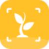 灵通植物v1.2